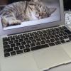 Mac Book Airのケースを外したら、改めて薄さ、軽さに驚いた!