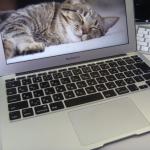 MacP1070426.jpg